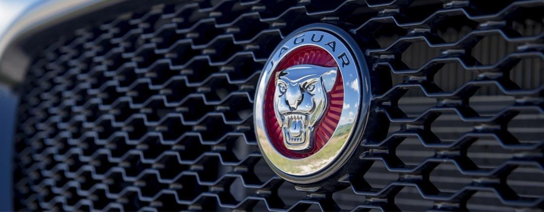 Jaguar break